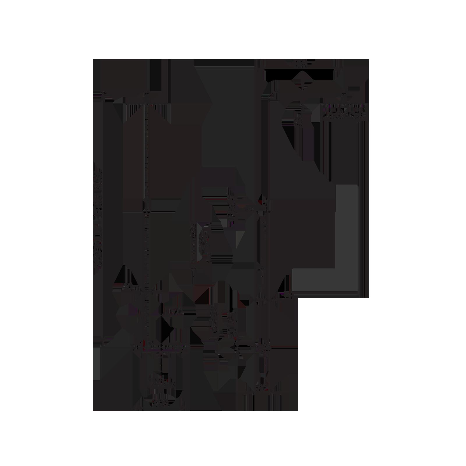 Thermostatische orientierbare Dusche
