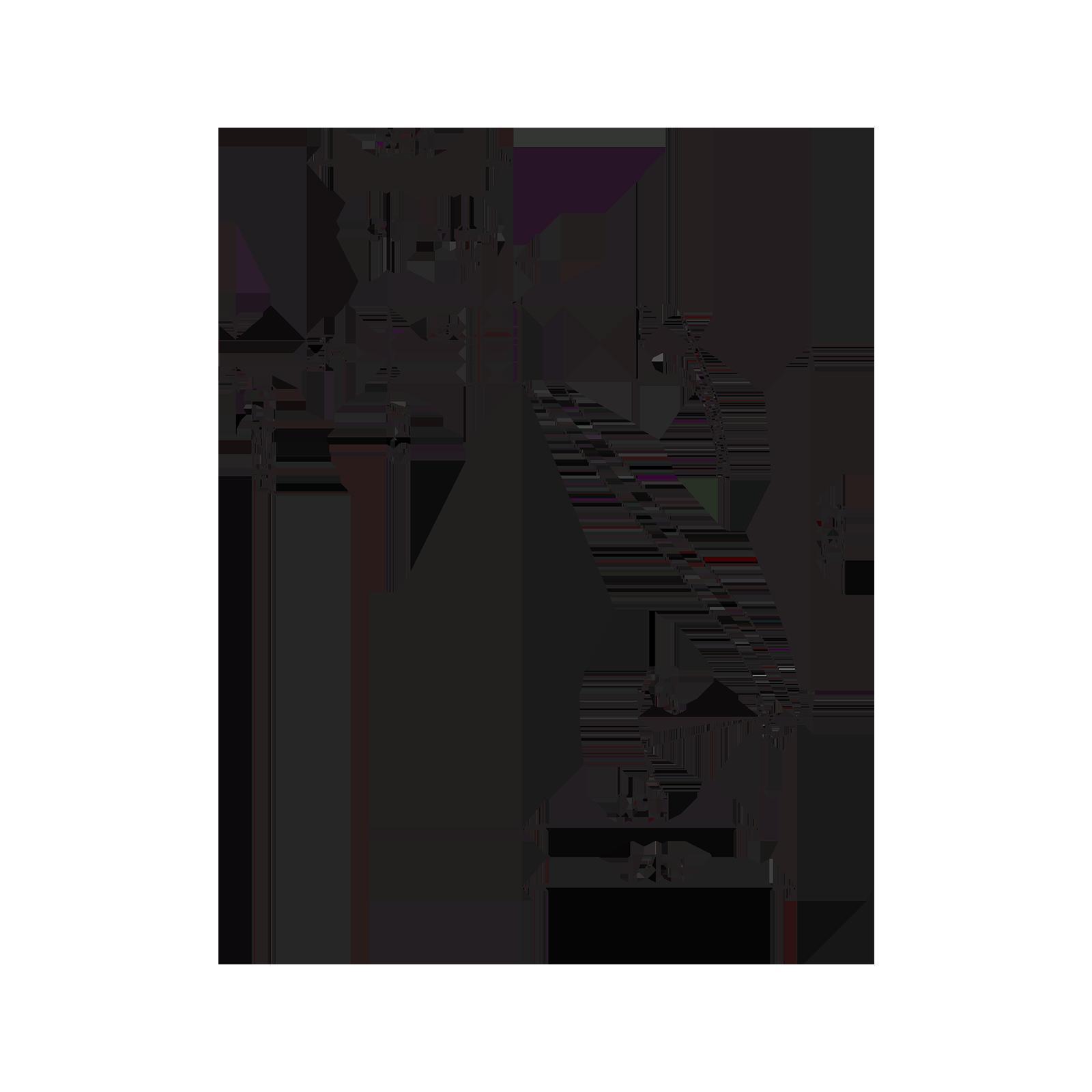 Kitchen sink mixer with swivel tub spout