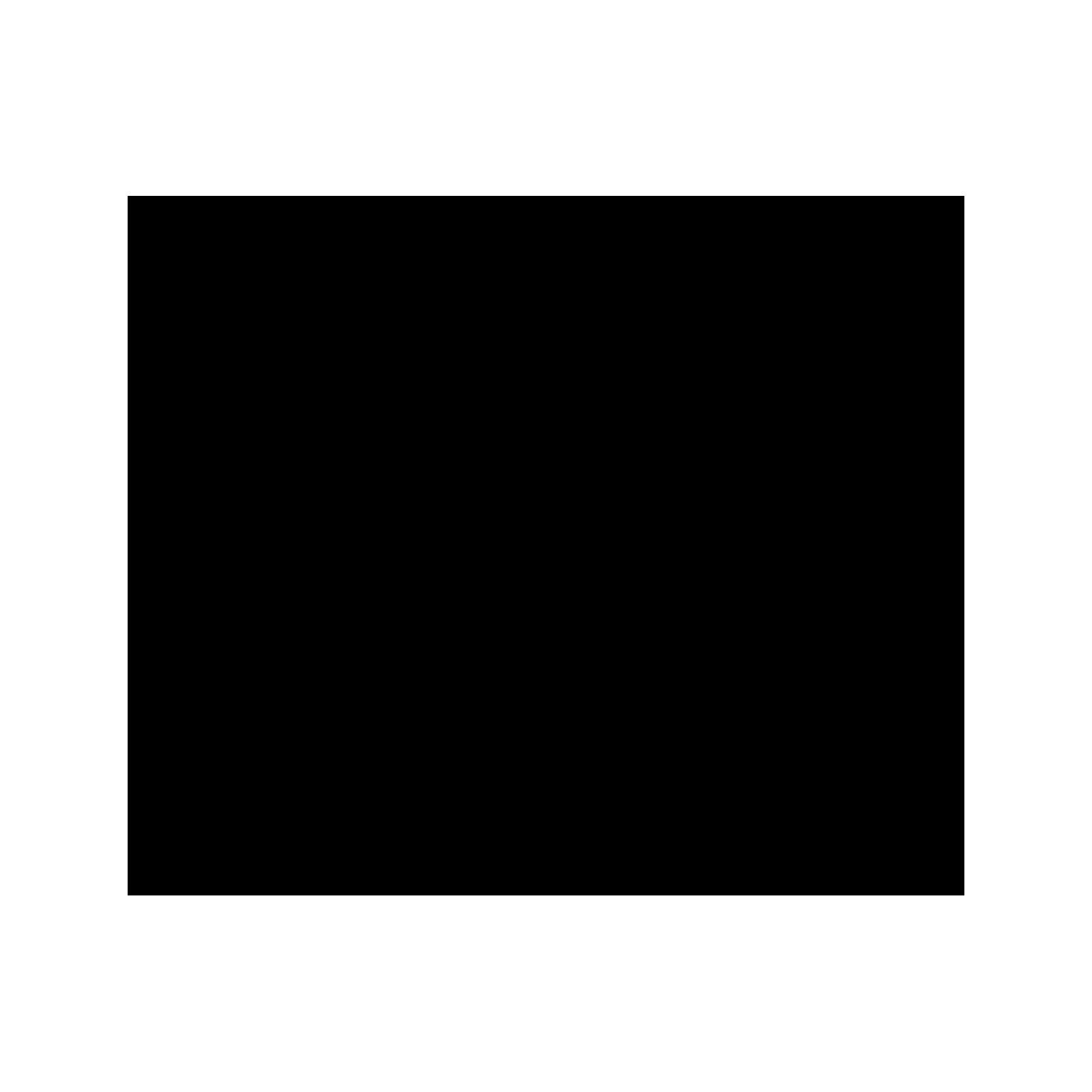 Doccetta doccia in ABS 3 funzioni con ugelli anticalcare