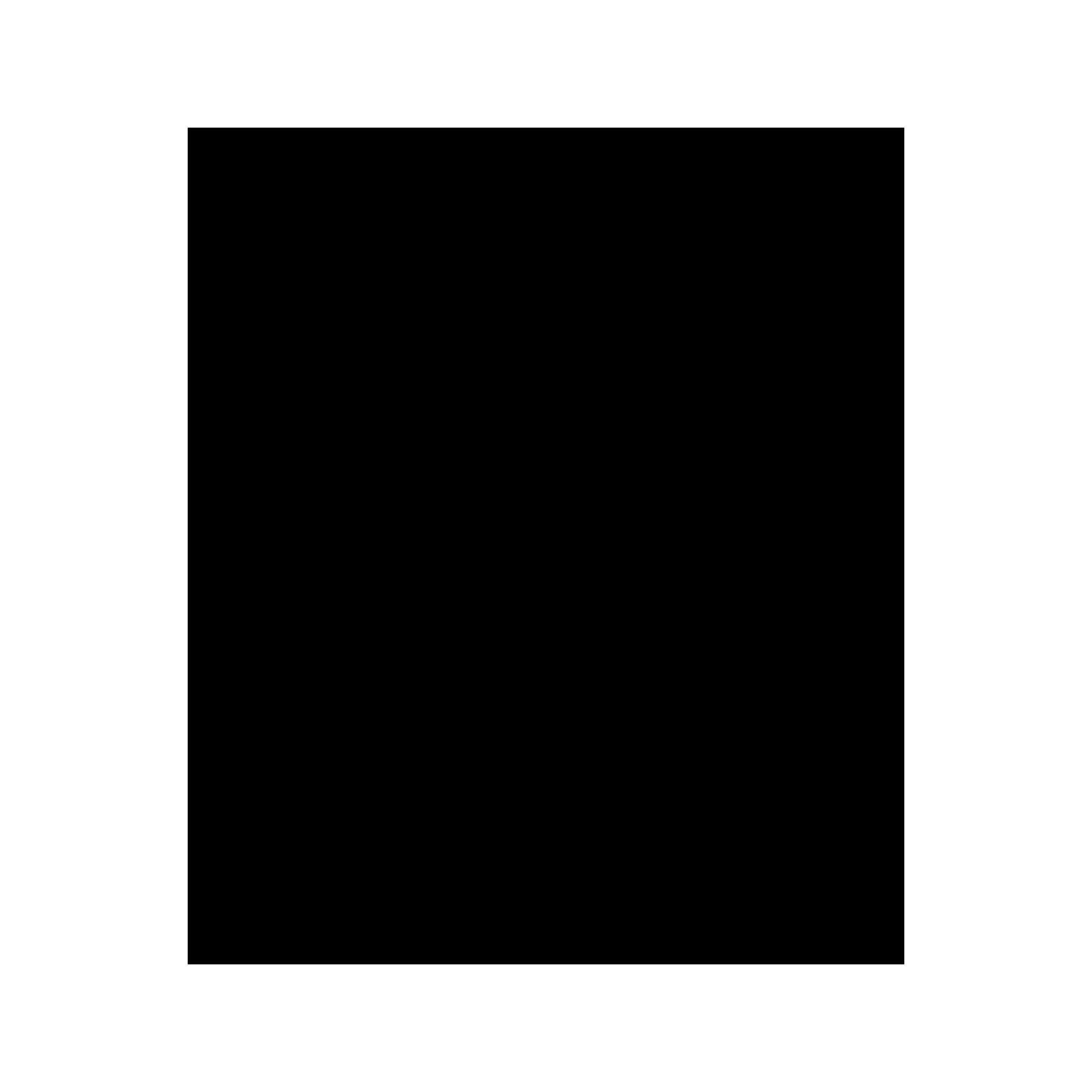 Doccetta doccia in ABS 5 funzioni con ugelli anticalcare