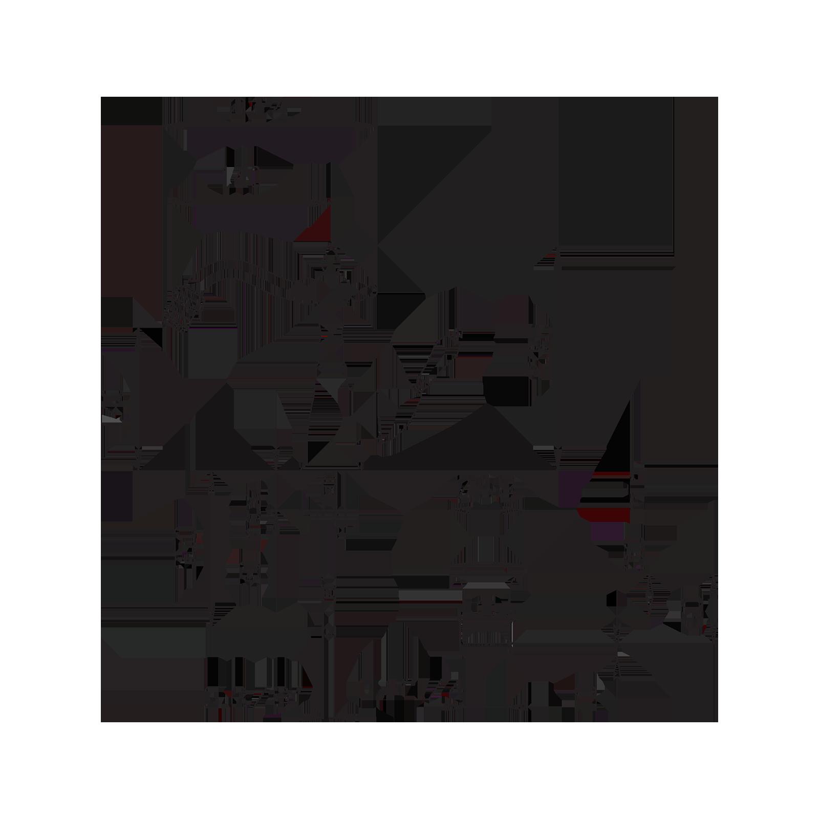 Miscelatore bidet con leva laterale e cristalli Swarowski