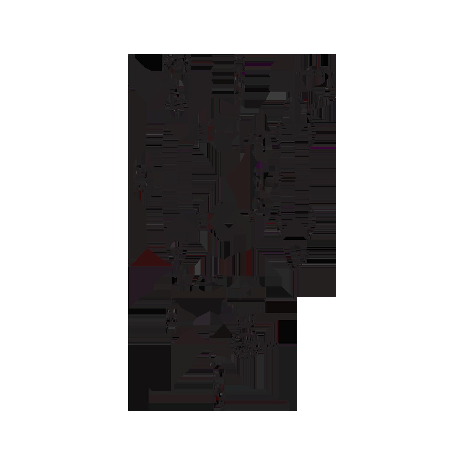 Mitigeur de douche thermostatique avec raccord inférieur  et levier clinique