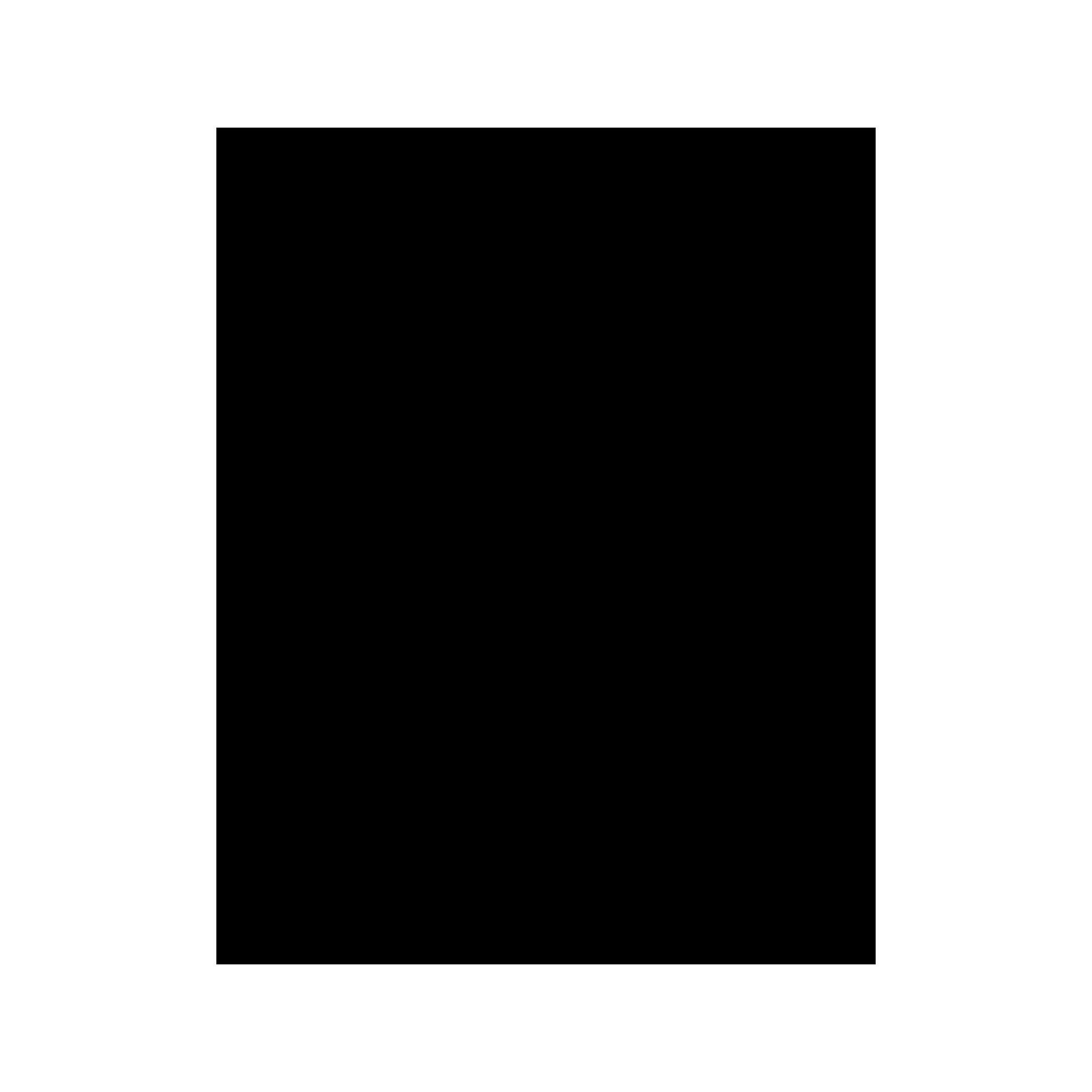 ABS-Duschkopf mit antikalken Düsen.