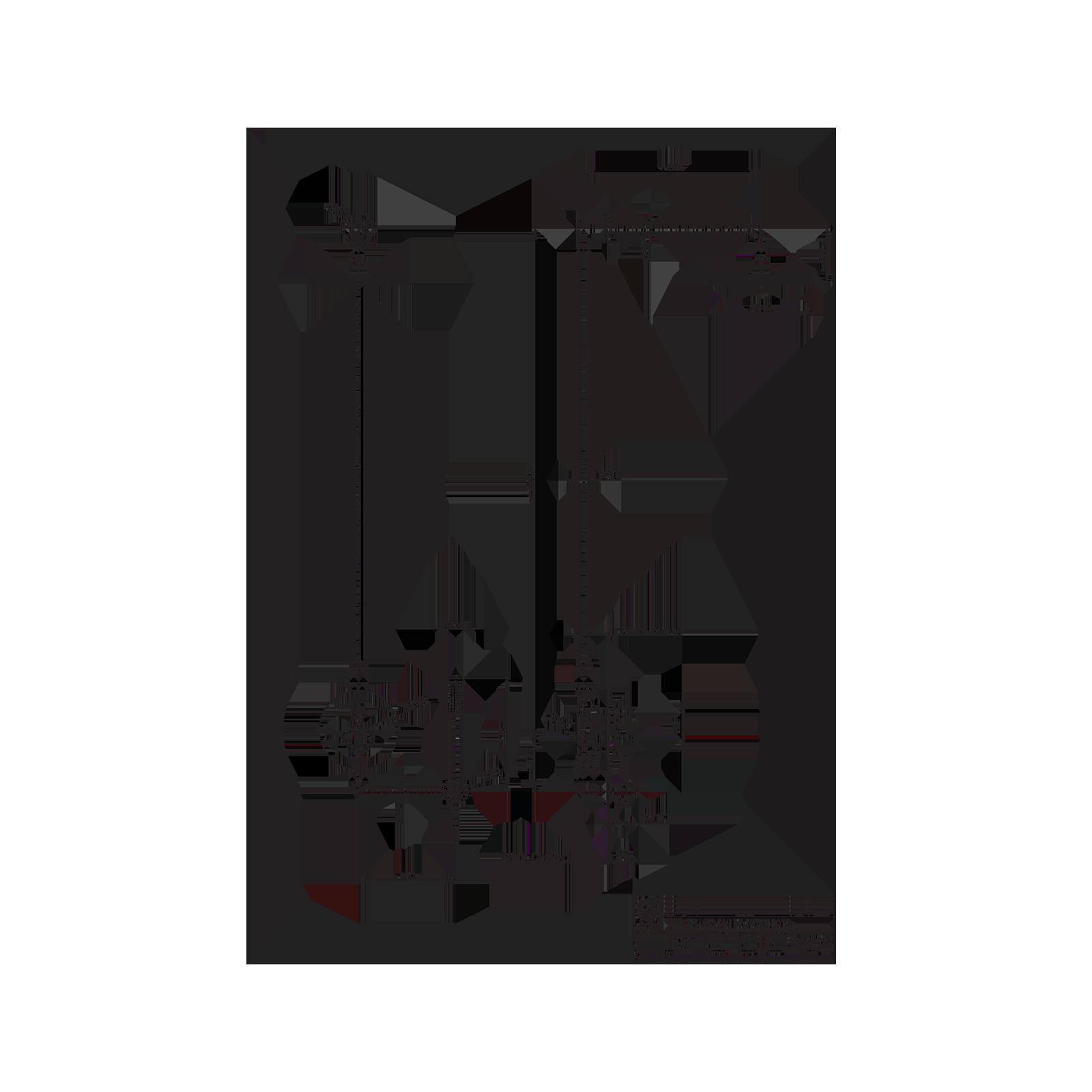 Colonne de douche thermostatique intégrée avec inverseur automatique  avec kit de douche.
