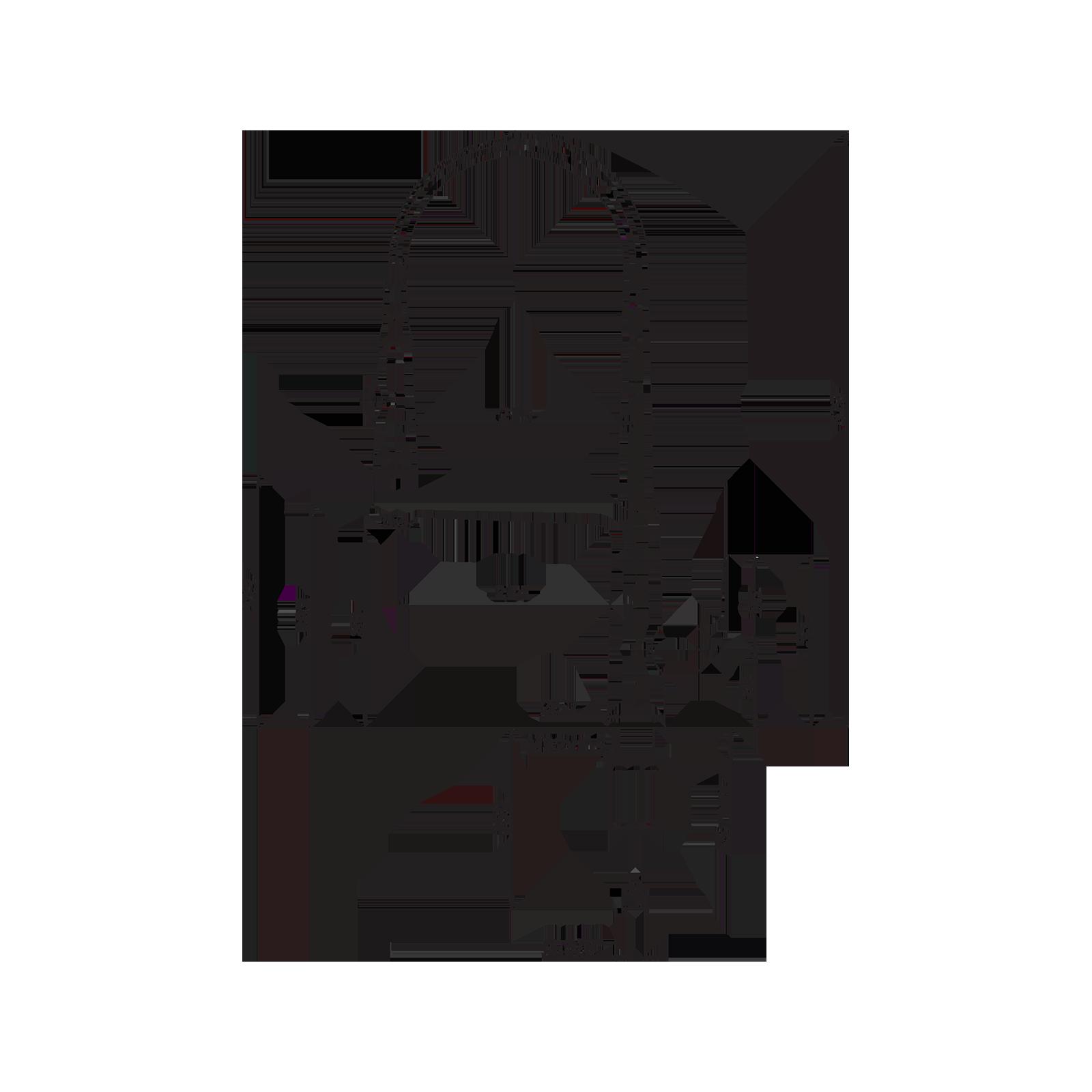 Mitigeur mono-commande pour évier avec levier latéral et bec pivotant à 2-jets